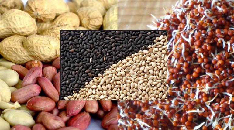Osteoporosis Calcium Rich Foods