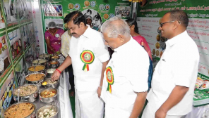 CM Edappadi Palaniswami Inaugurating School Lunch Scheme/ Representation Image
