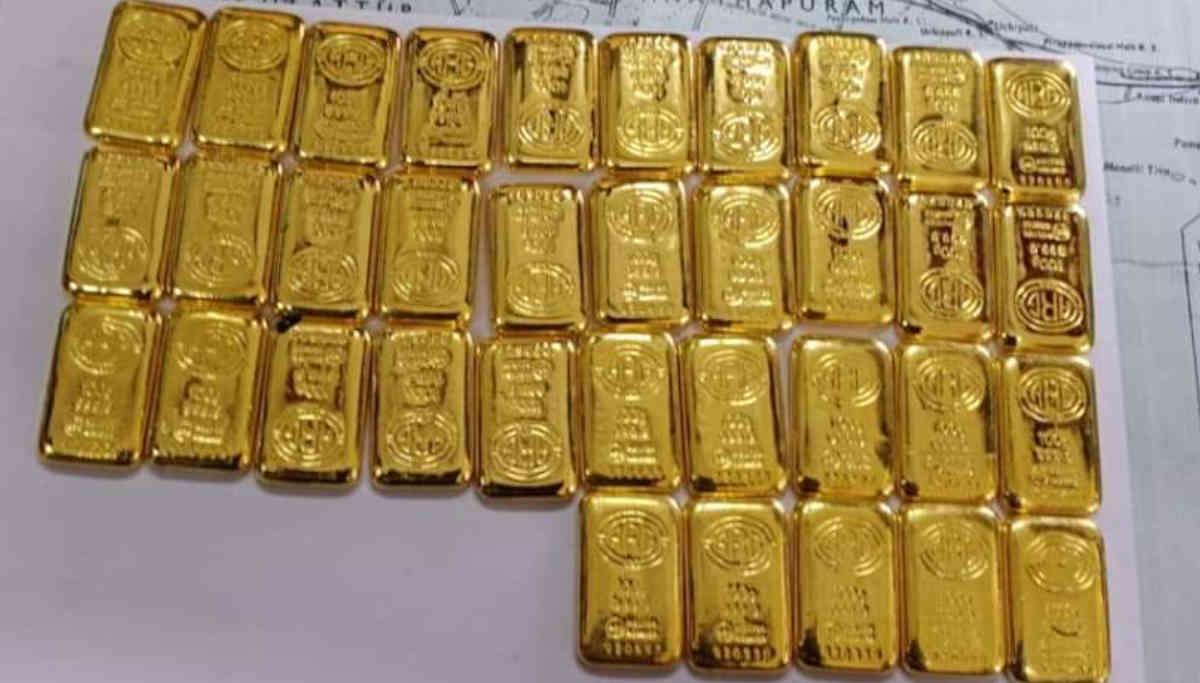 Indian Coast Guards Retrieved 14 k gold near Mannar gulf