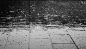 Rainfall in Tamil Nadu